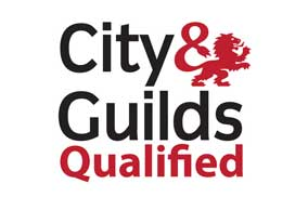 city and guild qualified electrician